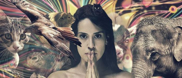 Atendimento Xamanismo Caminho do Amor