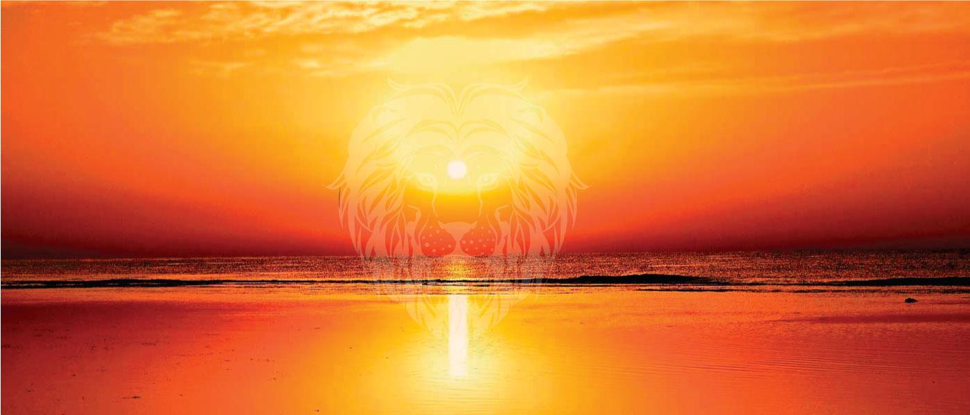 Renove o brilho da sua vida